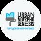Городской морфогенез - Культурный Код